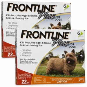 FRONTLINE Plus Orange