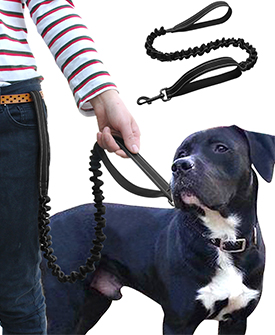 Double Handle Black Reflective Nylon Dog Leash